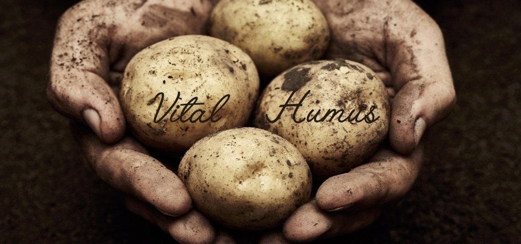 Vital humus